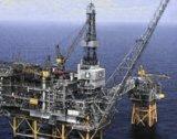 """""""Каварна изток"""" пуска газ от октомври 2010"""