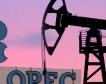 Накъде ще тръгнат цените на петрола?