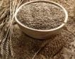 Хлебната пшеница се търси за 425-435 лв./тон