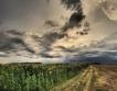 Търси се земя в Румъния