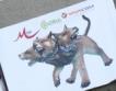 Иск срещу M-tel, Globul, Vivacom заради агресия