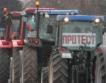 Зърнопроизводители пак на протест?