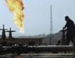 """Туркменистан има газ за """"Набуко"""""""