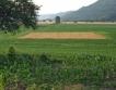 Пререгистрация на земеделски производители