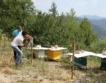 Смолян – електропастири срещу мечки