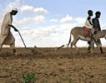 20 млн. хектара земеделска земя в Африка се продават