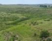 Залесяват неземеделски земи