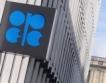 Петролът на ОПЕК - $100.78