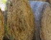 Земеделската рента стига до 100 лв./дка