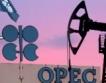 Петролът на ОПЕК се повиши
