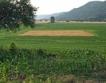 Цени на пазара на земеделска земя