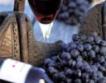 Изби от Силистра на празник на виното в Румъния