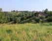 Ферми за червеи във Видинския регион