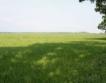 Пазарът на земеделска земя:цени, ренти