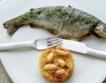 Консумацията на риба нараства главоломно