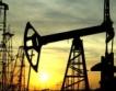 Петрол на ОПЕК = $99.19,  евро под $1.32