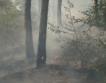 Доставка на 67 нови коли за горски пожари