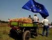 Немски експерти ще обучават български животновъди