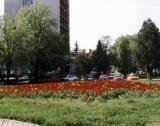 Заводи край Радомир се обединяват