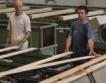 Германия търси квалифицирана физическа работна сила