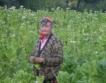 Бял риган вместо тютюн в Родопите