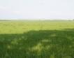 НС прегласува Закона за земята заради офшорки