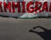 Близо 800 мигранти се падат на България