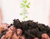 БГ участие в проект за биоземеделие