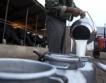 Без компенсации за родните млекопроизводители