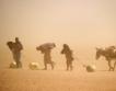 Климатични промени = бедност за +100 млн. души