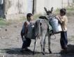 38 млн. роби в света,  27 хил. българи били роби