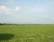 Земеделската земя стигна 1000 лв. за дка