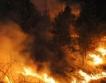Пожар в горите на Златоград