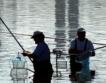 Рибарски общности получиха 2.4 млн. лева