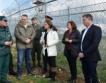 +6,2 млн. лв. за ограда на границата