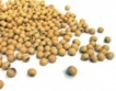 Одобрение за 3 вида ГМО соя в ЕС