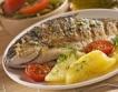Ядем повече риба, отколкото сме произвели