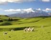 Бум на туризма в Нова Зеландия