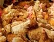 Украйна: Птичи грип и забрана за износ
