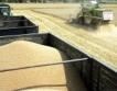 +6 млн. т пшеница за 2016/2017 г.