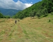 85 % от българите: Природата е най-важна