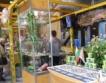 Започна агро изложение в Пловдив