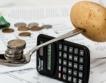 Румъния: 5.7% ръст, ръст и на инфлацията