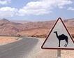 Признава се осигурителния стаж в Мароко