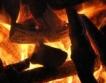 1000 лв. глоба за палене на огън в гората