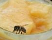 240 хил. тона мед се произвеждат в ЕС