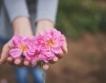 Японска компания търси българско розово масло и вода