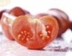 "Нов сорт домати ""Алено сърце"""