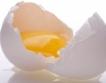 Цената на яйцата без промяна