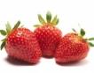 ЮЗДП със своя ягодова градина
